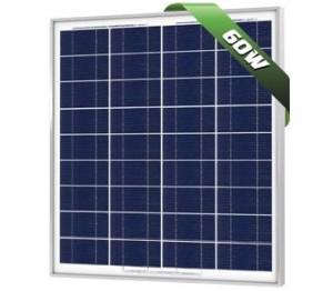 60W Poly Solar Panel 12V